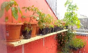 Regenwetter_Drehtag 1